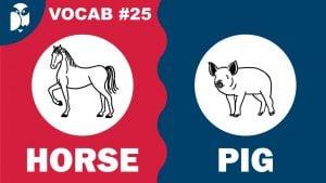 Lesson 25 Vocabulary